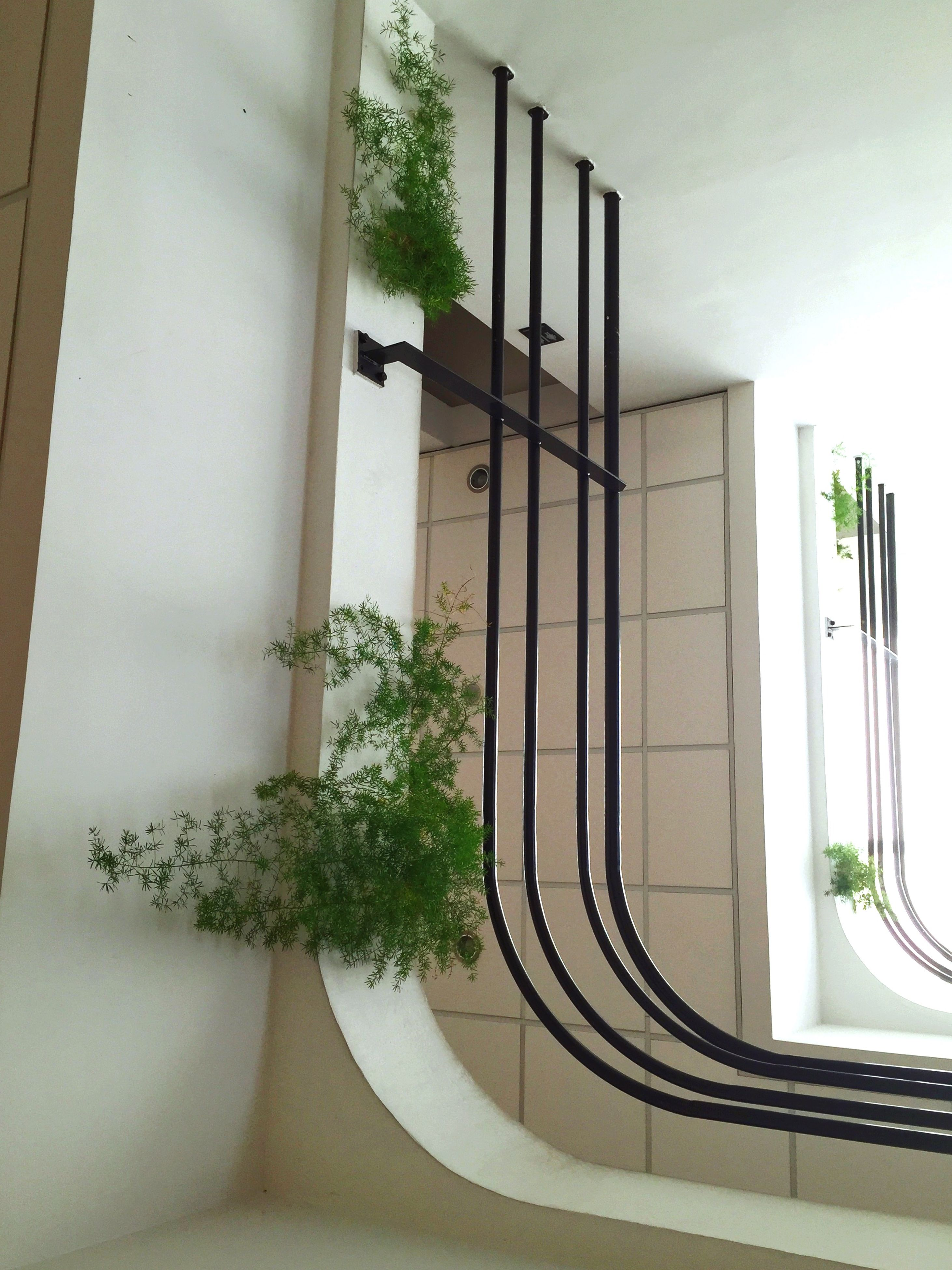 architecture, built structure, indoors, railing, growth, building exterior, plant, potted plant, low angle view, steps, building, window, staircase, steps and staircases, no people, wall - building feature, day, house, balcony, sunlight