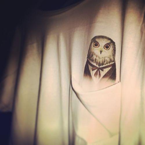 Owl Owlbatdress Cotton Newcollection pocket owlinapocket