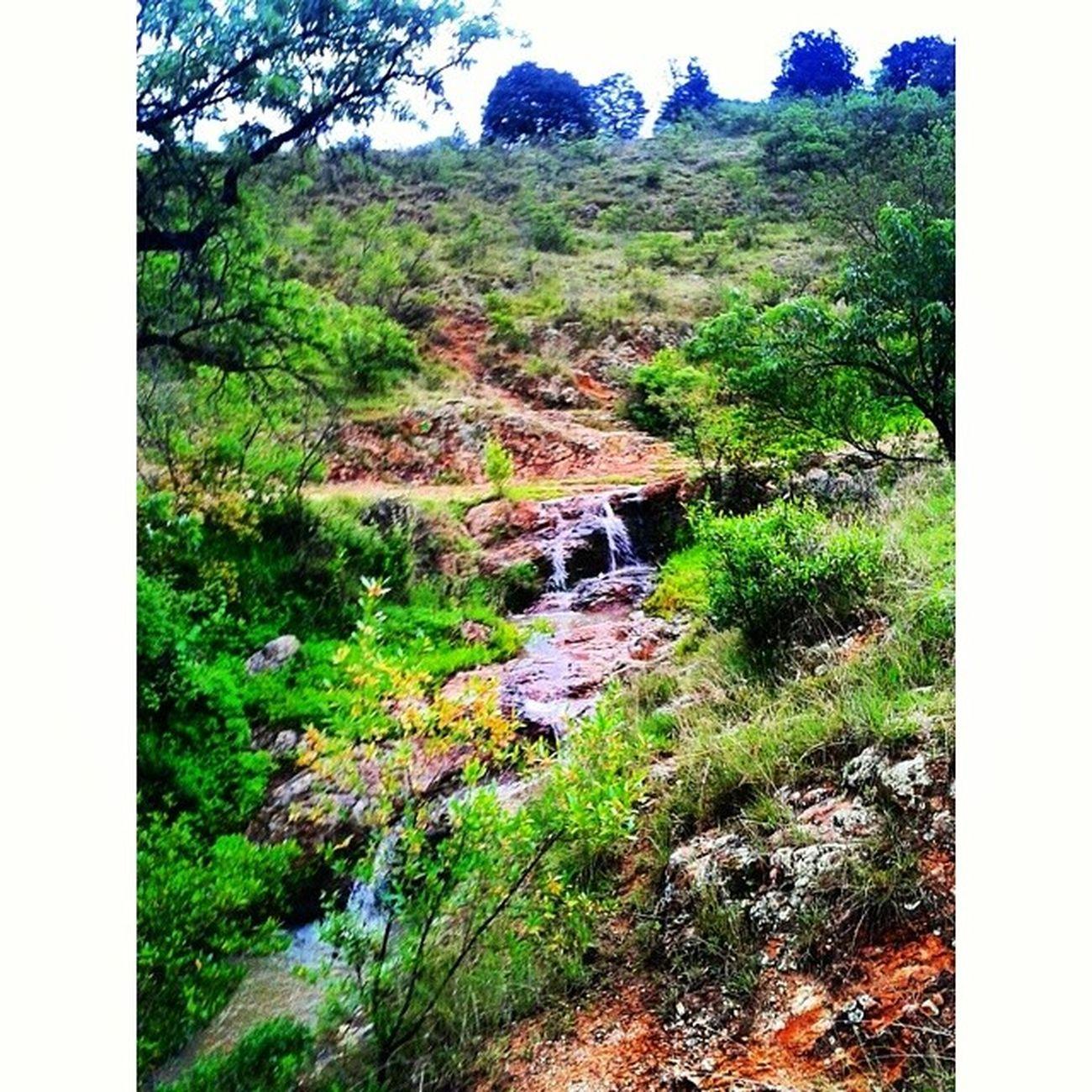 Caminando.... Oaxaca Pueblitobonito