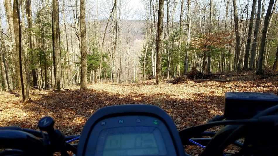 A day in the woods Atv Adventure Woods Forest Riding Fun