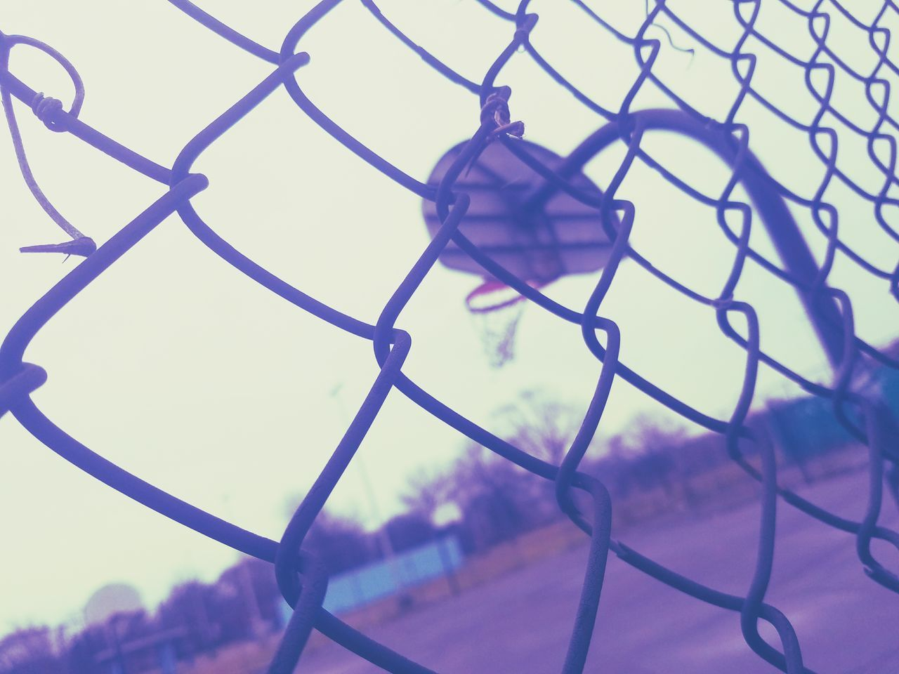 had to get the shot at this angleBasketball - Sport Sport Chainlink Fence Metal Sky No People Fence Basketball Hoop Outdoors Day Playground Streetphotography Real Life Beautiful Sky Nature Stand Out From The Crowd Leisure Activity Photooftheday Lovelovelove Getting Creative Walkingaround Learn & Shoot: Balancing Elements Photography Is My Escape From Reality! Real Photography Live, Love, Laugh