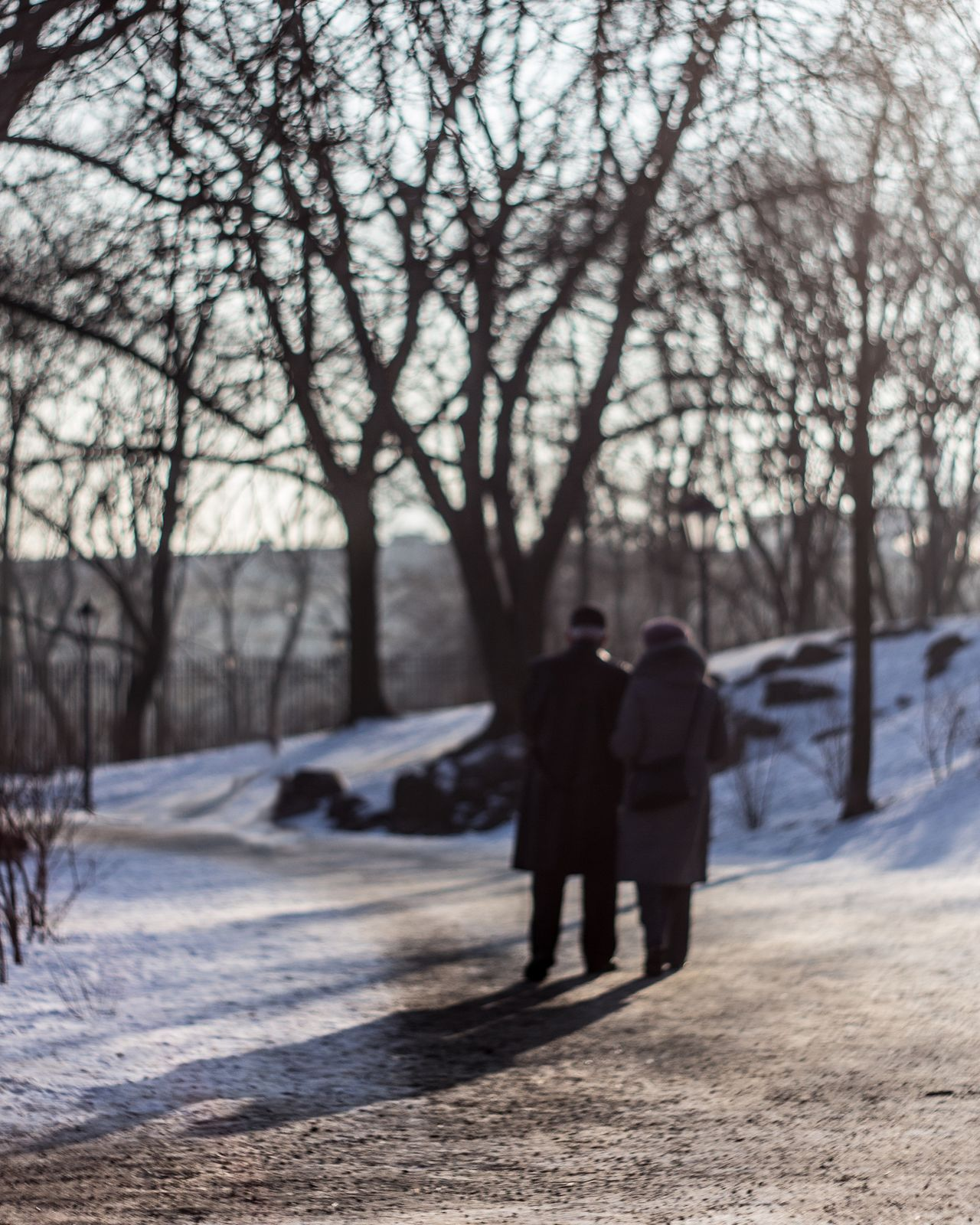 Winter Two People Walking Bare Tree Rear View Nature Togetherness Men Bonding Day Women Beauty In Nature Outdoors Full Length Cold Temperature Tree Leisure Activity Naturephotography Palac Krasinskich WarsawCity Photography Cloud - Sky City Love Warm Clothing