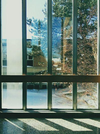 Window Studying Taking Notes Learning Daydreaming Window Windows Uwaterloo Waterloo