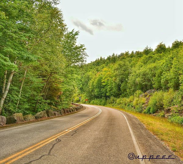 Hiking Greenery Winding Road Miles To Go Nature EyeEm Best Shots - Nature Mini Vacation Lake George Taking A Break Landscapes With WhiteWall