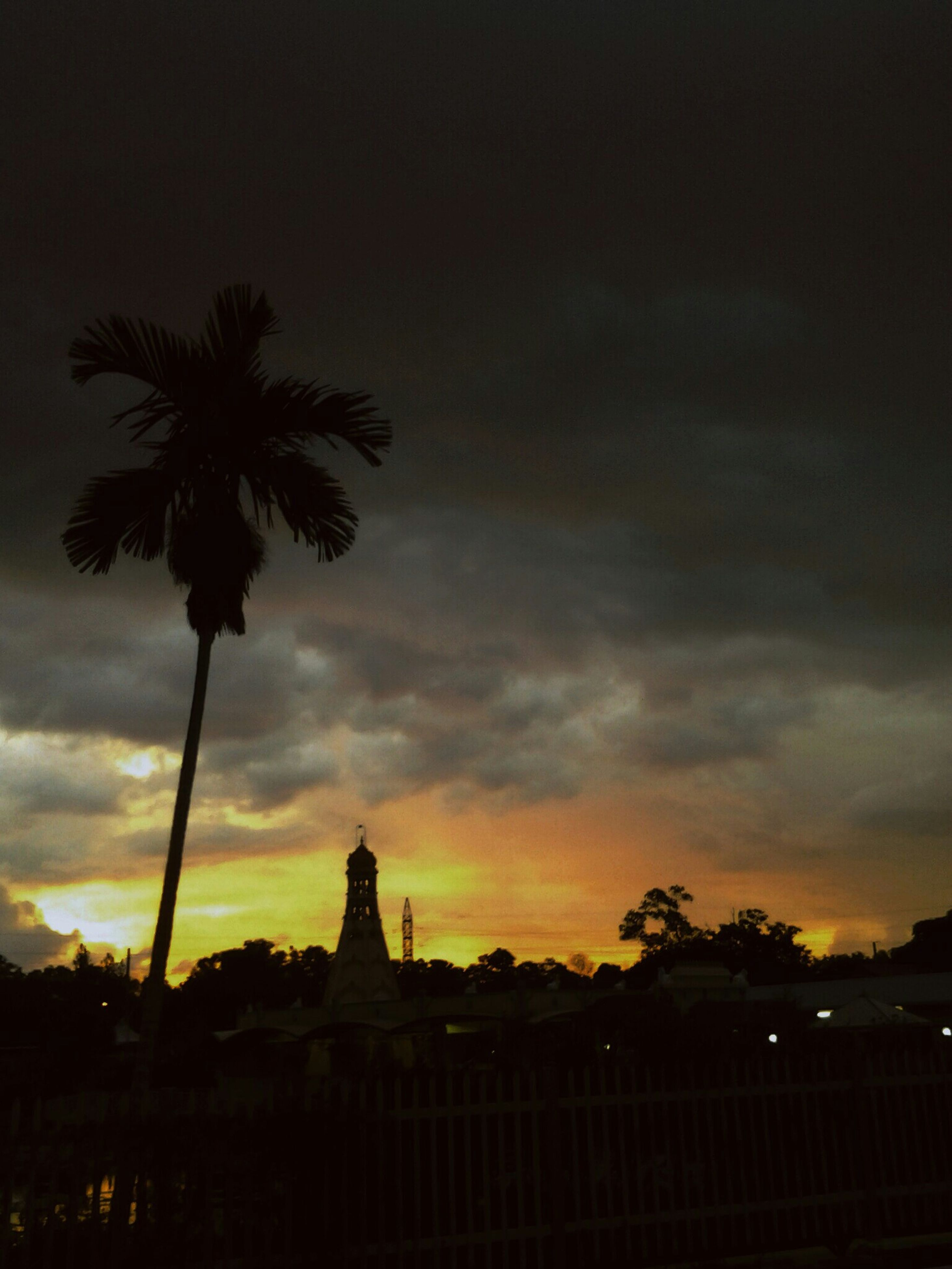 silhouette, sunset, tree, sky, palm tree, built structure, building exterior, architecture, cloud - sky, low angle view, beauty in nature, orange color, dusk, nature, dramatic sky, scenics, growth, tranquility, dark, cloud