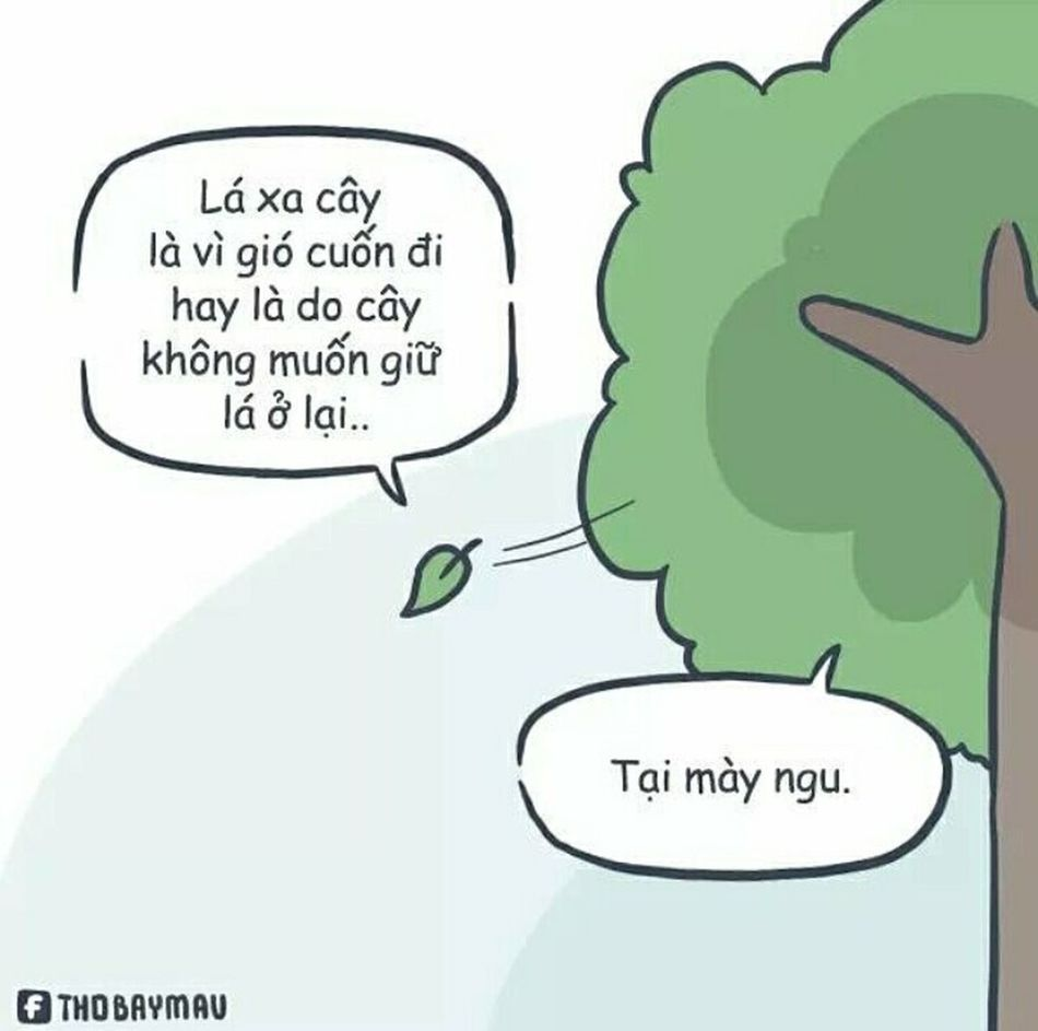 Thỏ Bảy Màu YOU BLUE ME AWAY...... Sadness😢 Unbelievable Life Not Strange To Me No Sun Leaves🌿 Trees🌳🌲🌳