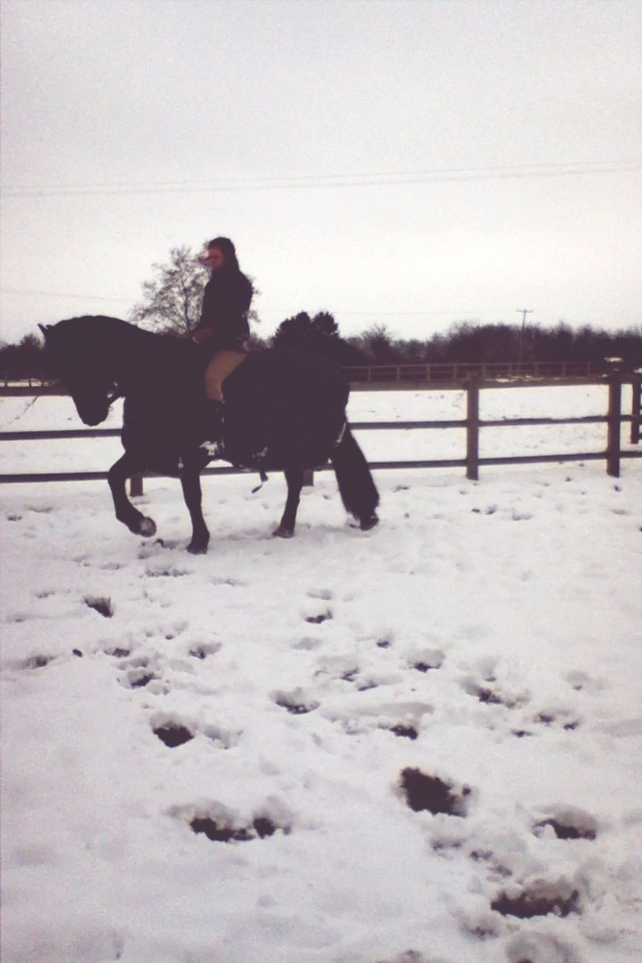 Riding In The Snow