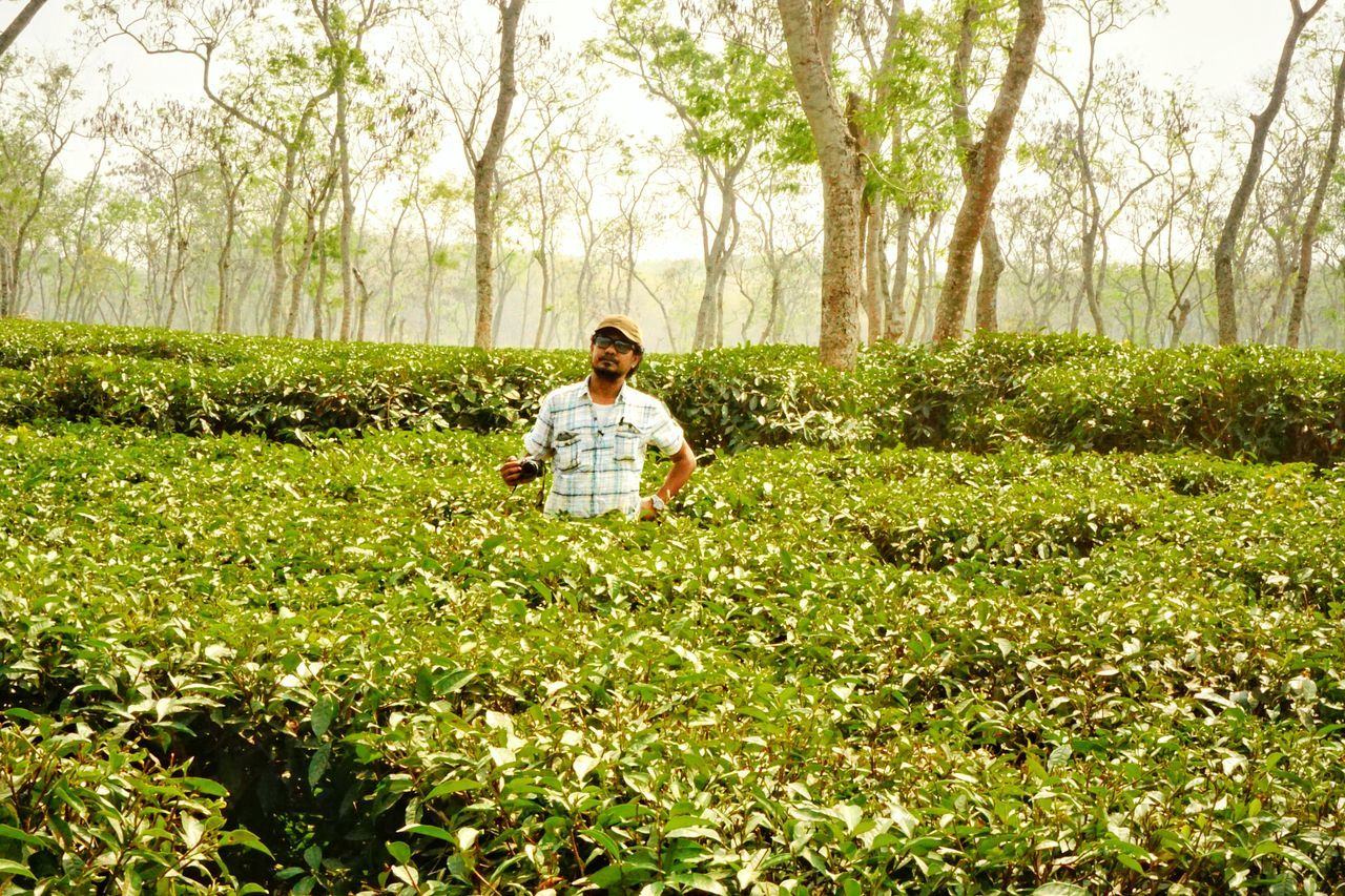 Sony ILCE 6000. Portrait Portrait Photography Portrait With Atmosphere Landscape Minimalism Tea Garden Hilly Landscape Minimalism Photography Light Reflection Minimalobsession Landscape_Collection Landscapes Passion For Photography Passion Travel Photography Glowing The Rise Of Nature Green Leaves Me, My Camera And I Landscape With Whitewall Learn & Shoot: Balancing Elements Tea Leaves Tea Plantation  Moulavibazar, Bangladesh