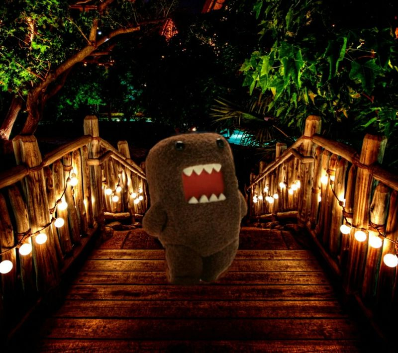 Domonation Domo Kun Domo Swagg Like A Boss