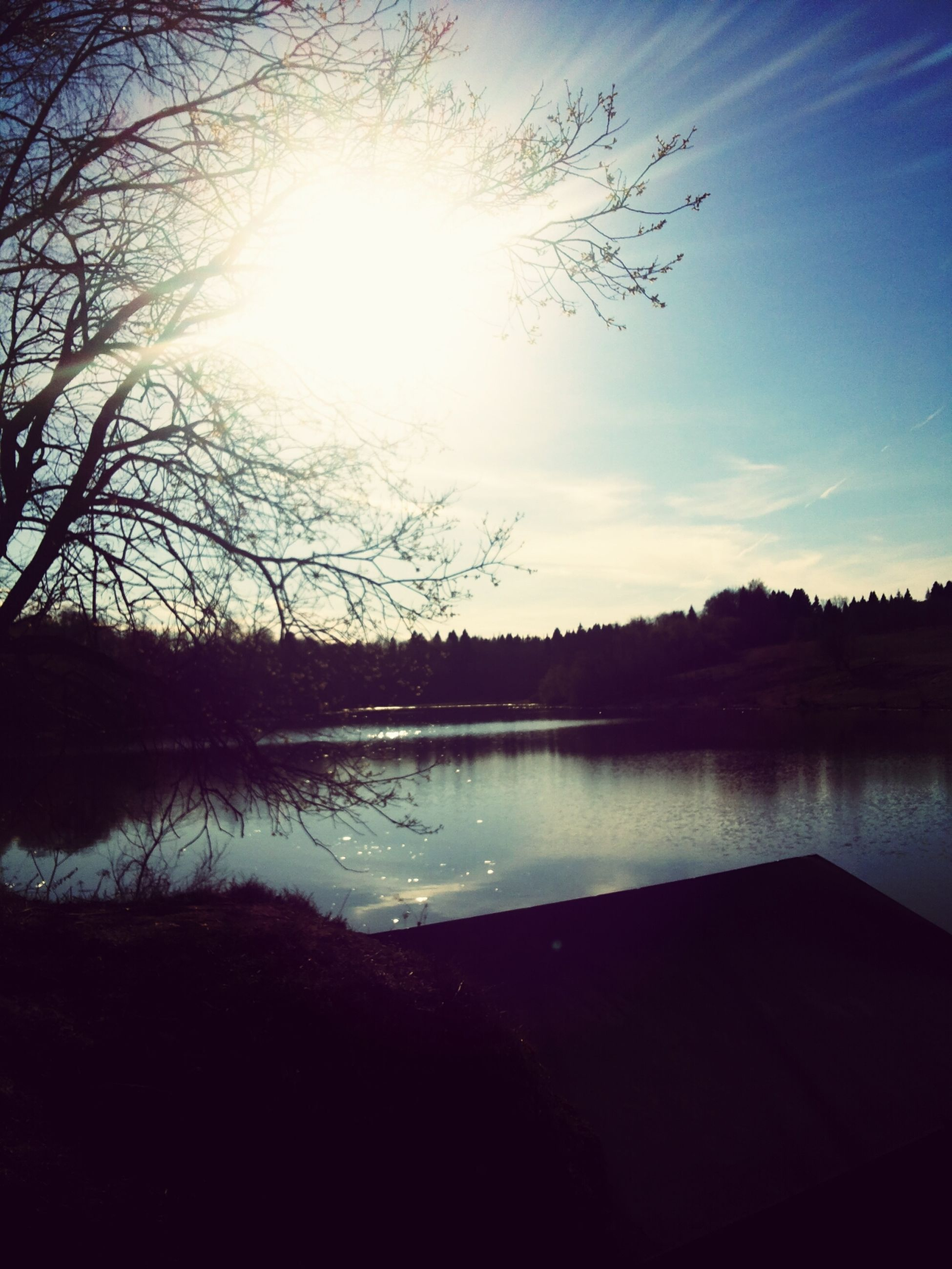 sun, water, reflection, sunlight, sky, tree, sunbeam, lake, silhouette, tranquil scene, tranquility, beauty in nature, scenics, lens flare, nature, river, sunny, outdoors, cloud - sky, sunset