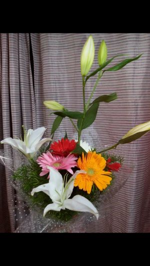 A Token of LOVE & CARE Freshness High Angle View Celebration Flower Indoors  Bouquet Studio Shot Flower Head Leaf Fragility Beauty In Nature Growth