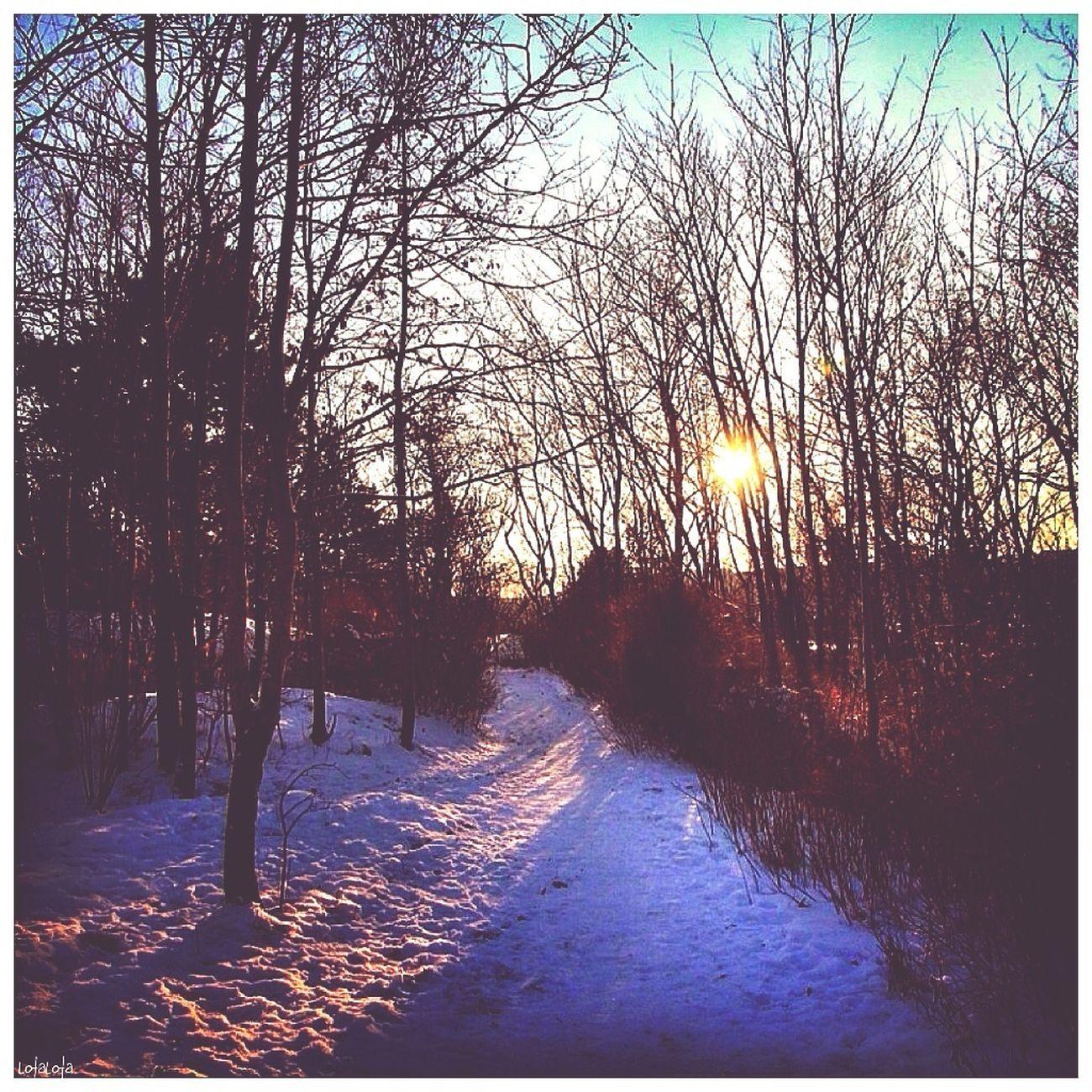 Good Morning From Sweden