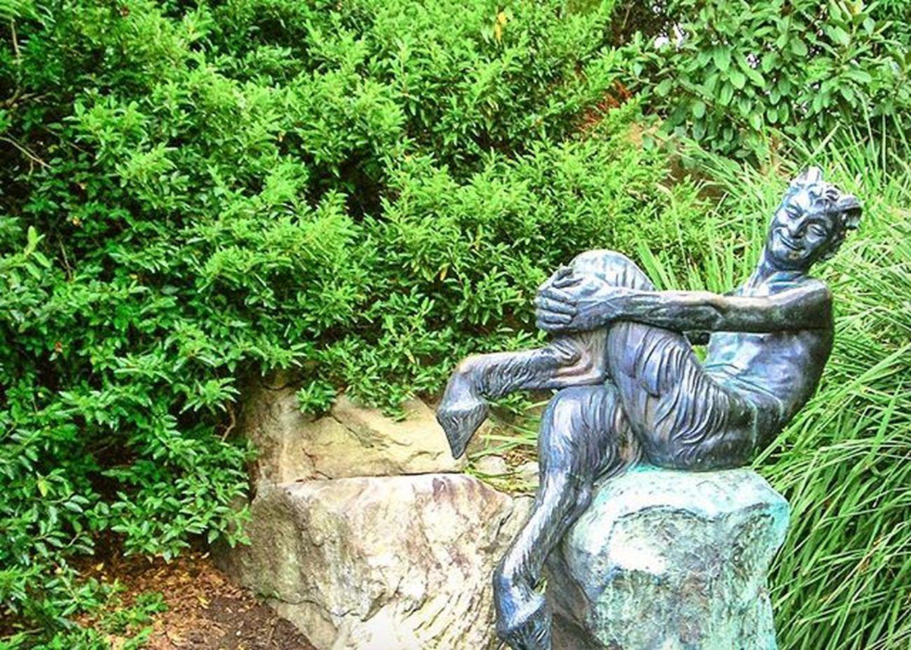 From my memory box. Royalbotanicgardens Sydneyaustralia Satyr