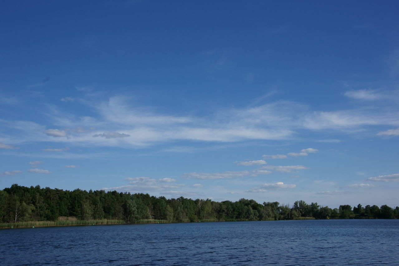 Scenic View Of Trees And Flughafensee Lake Against Sky