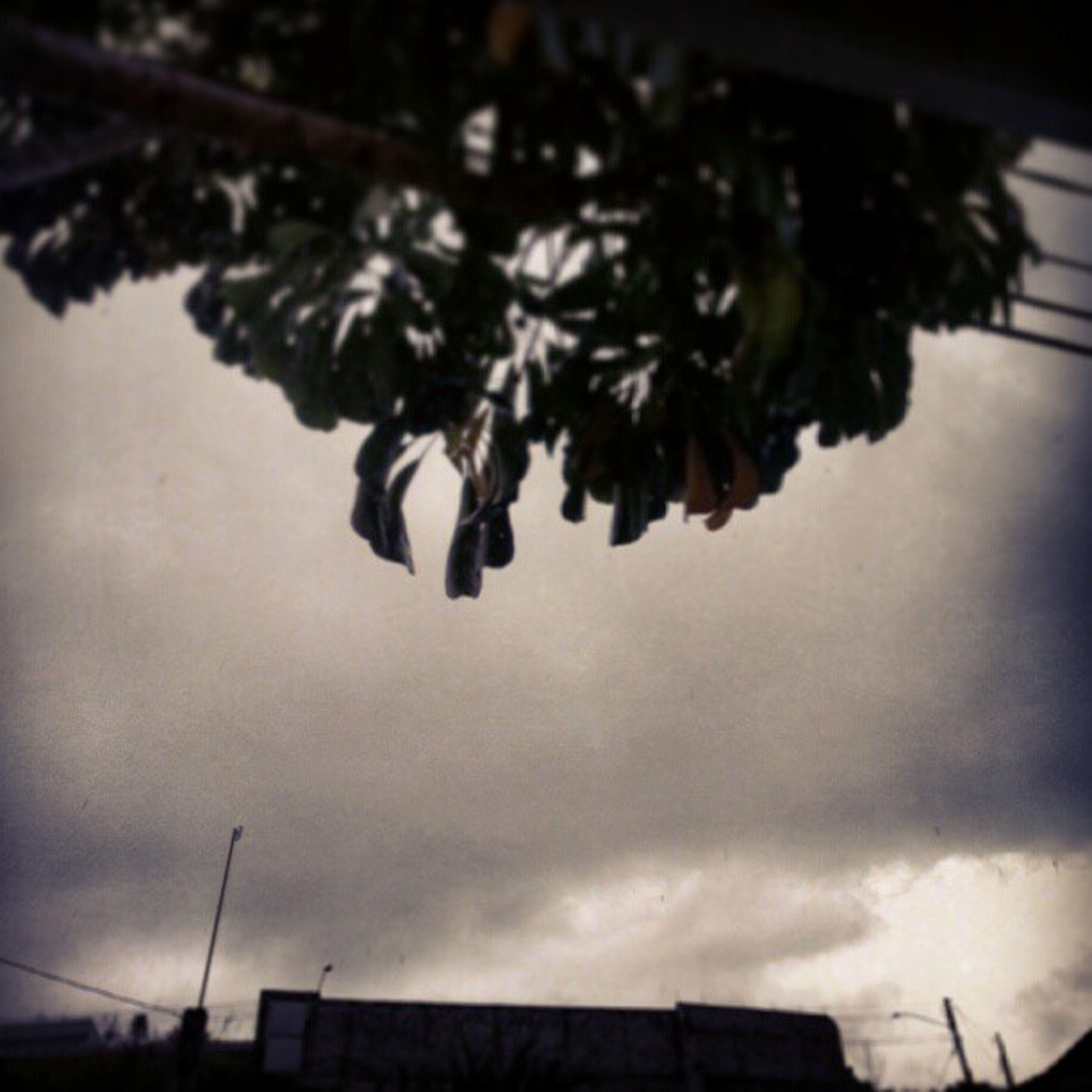 Rain Storm Snow Day chuvoso tempestade power pé d'água don't like Só porque eu tava melhorando da tosse o tempo muda --'