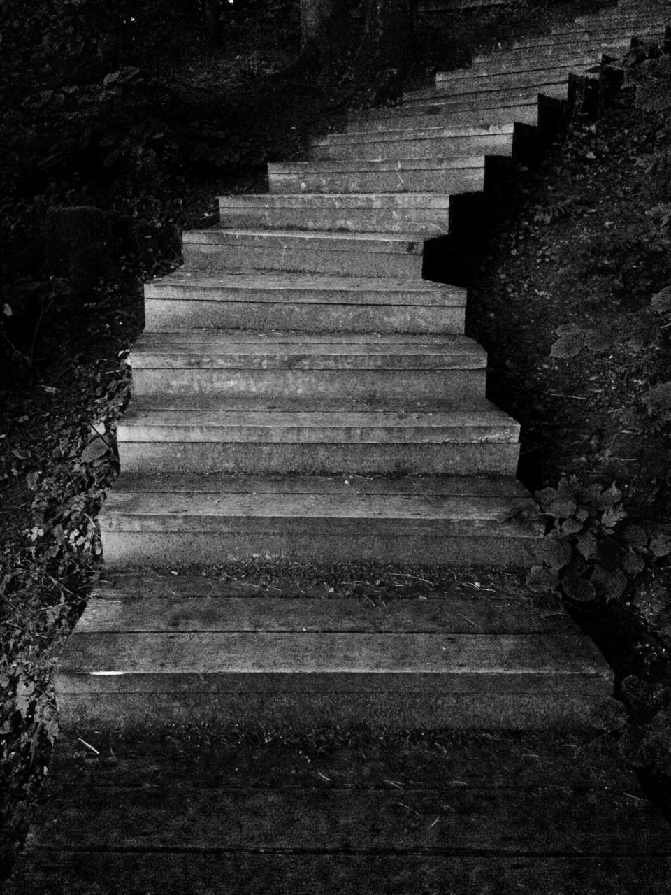 steps, steps and staircases, staircase, in a row, stairs, low angle view, no people, outdoors, day, nature