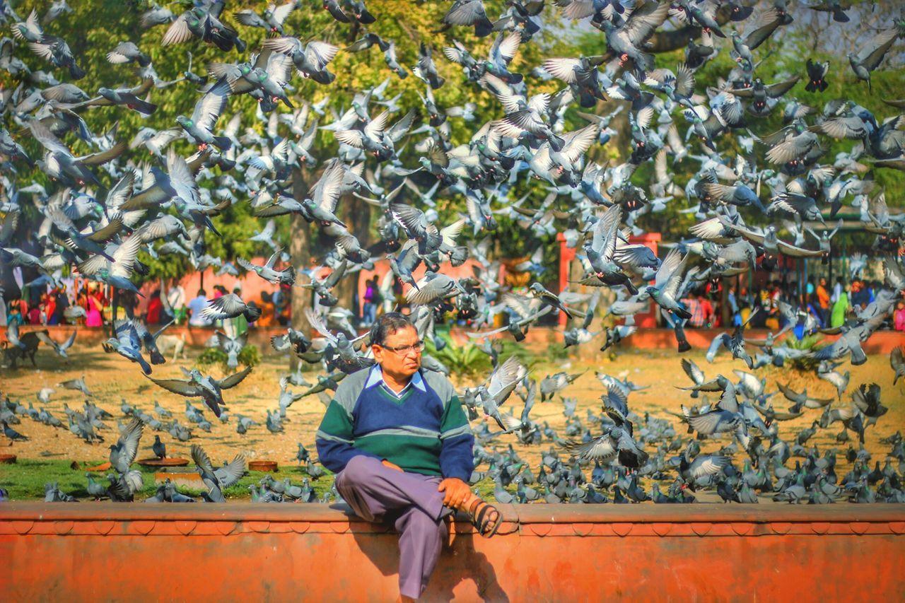 People Birds EyeEm Best Shots EyeEmNewHere Travelgram Nature Outdoors Real People Rajasthandiaries Rajasthan_diaries EyeEm Gallery