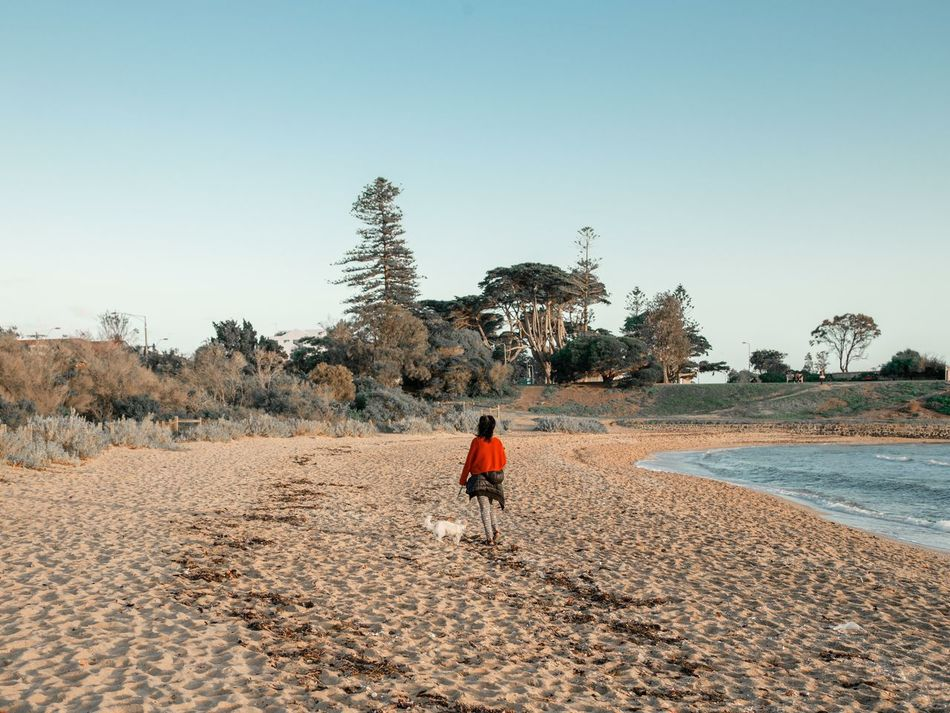 doggo One Person Sky Outdoors Clear Sky Sand Real People Nature Landscape Beauty In Nature Day Women Around The World Back View Dog Walking A Dog Beach Beach Photography Australia Contemplative Dreamlike Long Goodbye