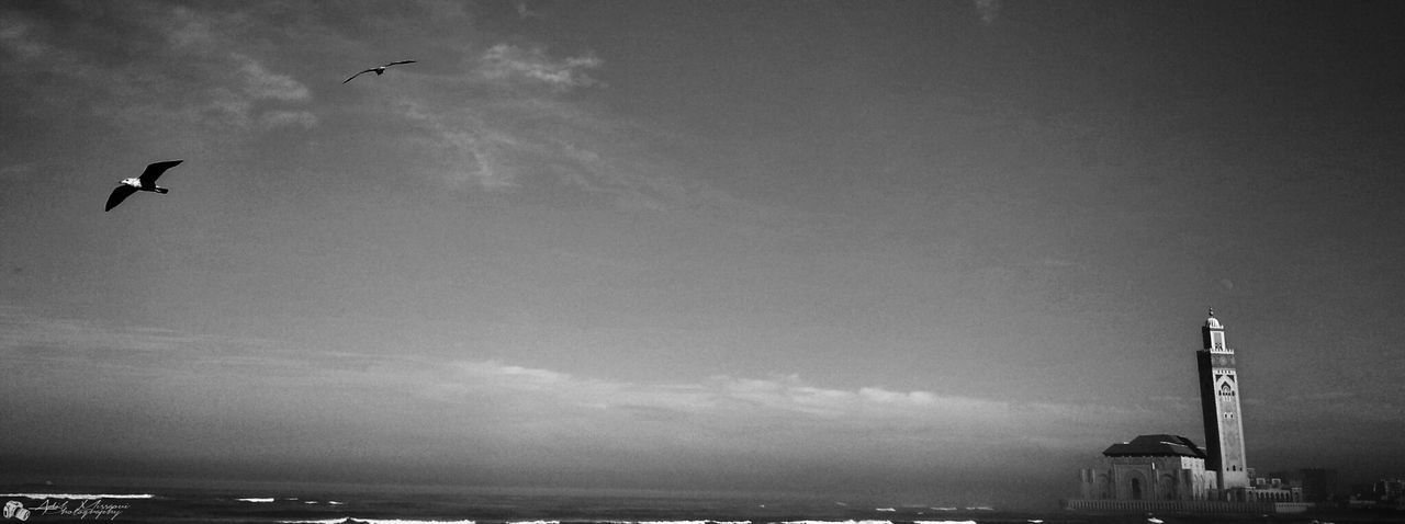 Sky_collection Bw_collection Beachphotography Mosque