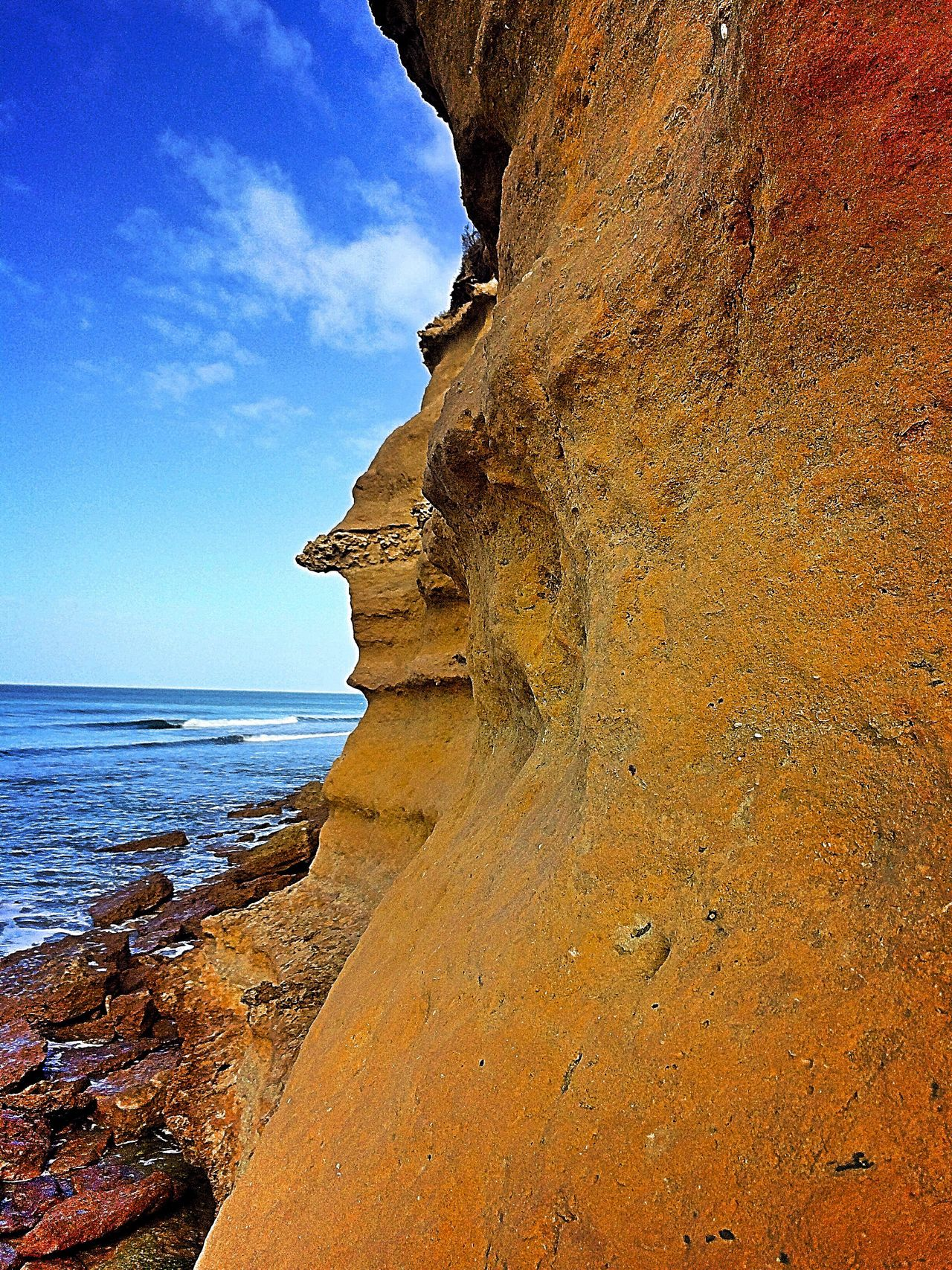 Facesinnature Australia Torquay Ocean Beach Nature