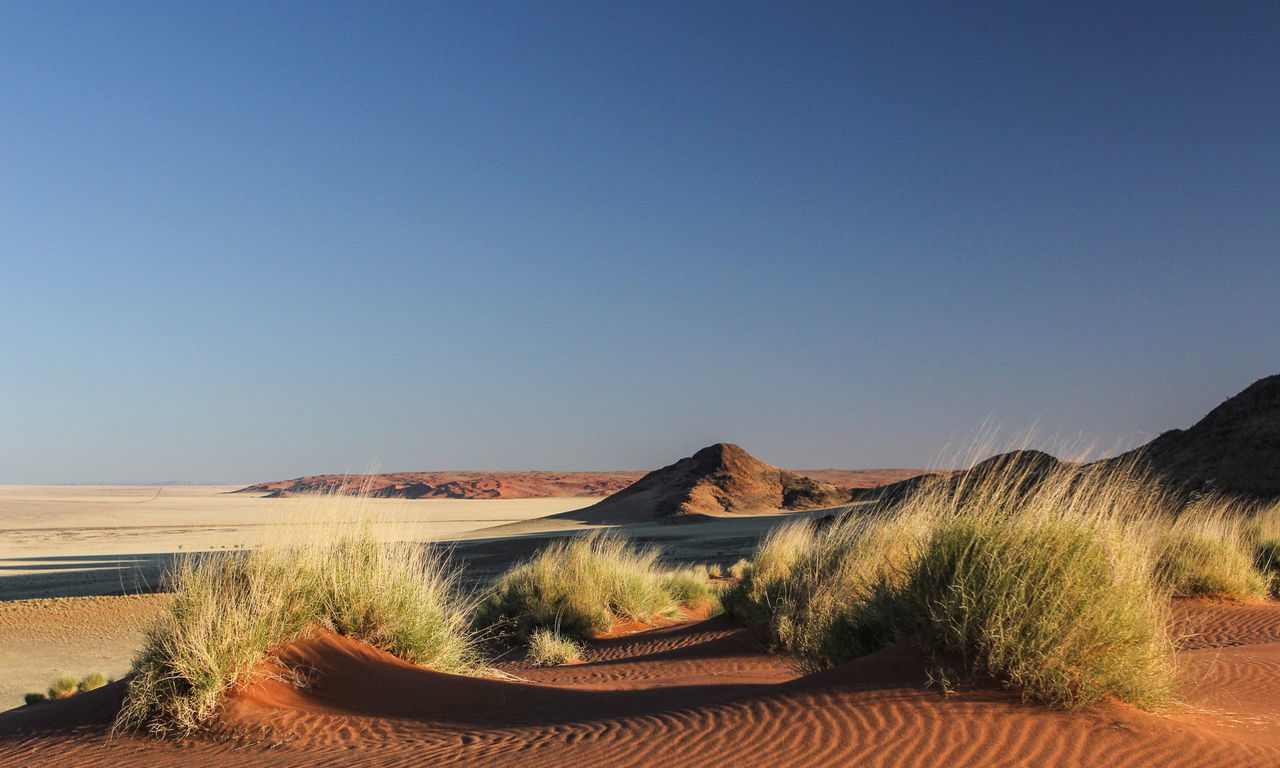 Arid Climate Desert Grass Grassland Kanaan Landscape Majestic Namibia No Clouds Non-urban Scene Outdoors Sand Scenics Sunset