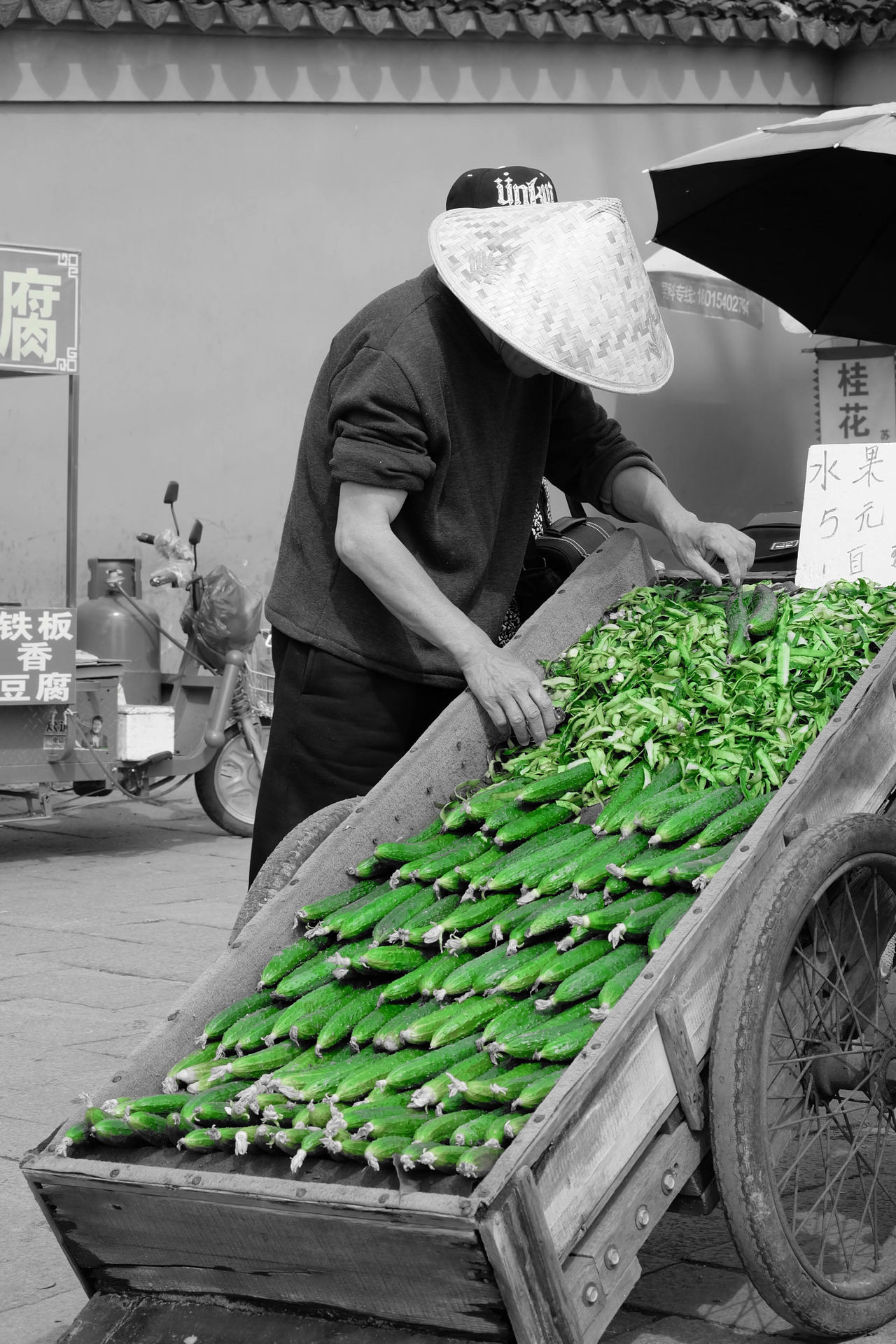 Casual Clothing China Chinese Chinese Culture Folk Green Color Lifestyles Old Town Plant Spot Color Suzhou