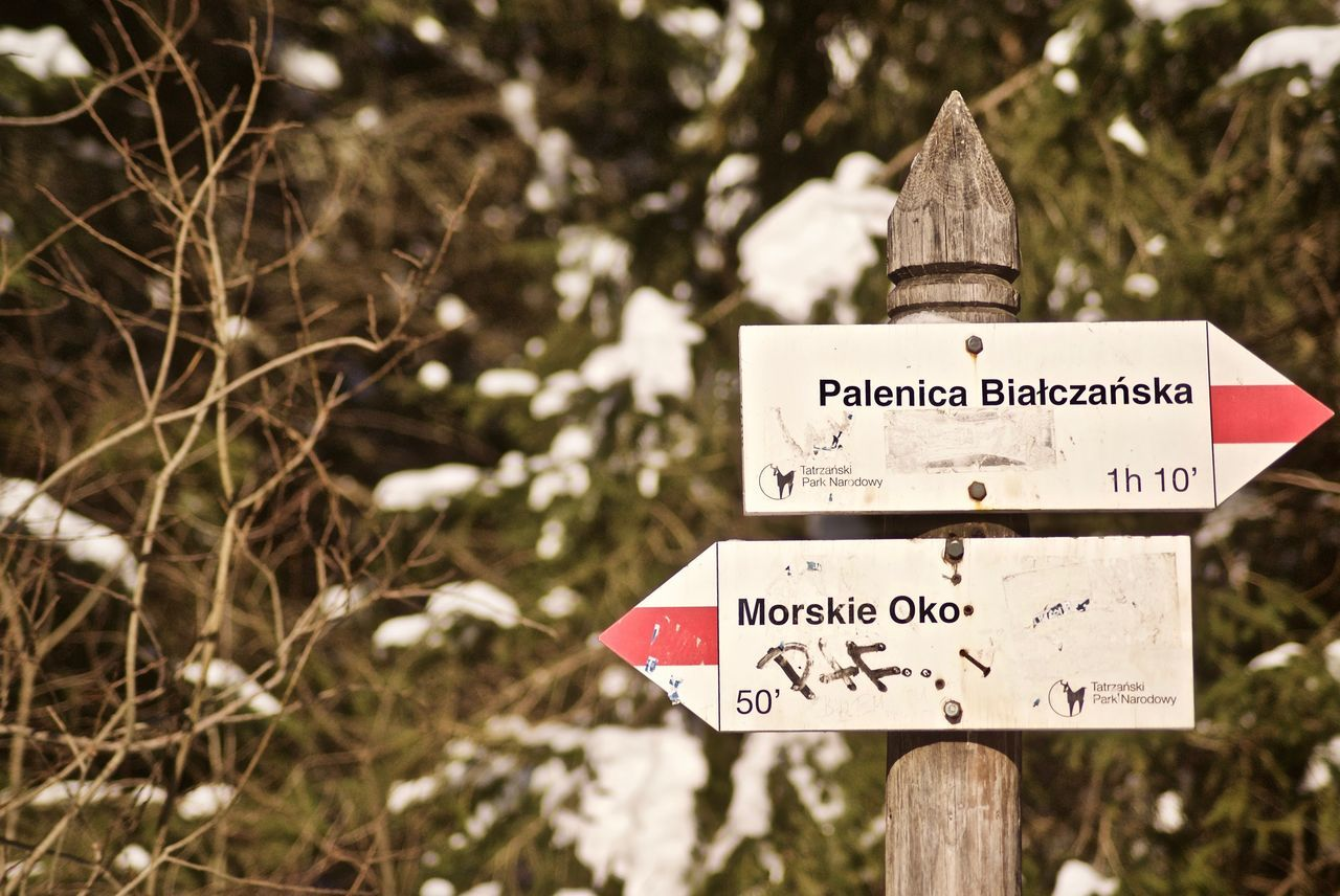 Focus On Foreground Text Sign Nature Communication Outdoors Winter Cold Temperature Close-up Beauty In Nature No People Road Sign Morskieoko Morskie Oko Poland Wintertime Arrow Arrows Distance Hello World