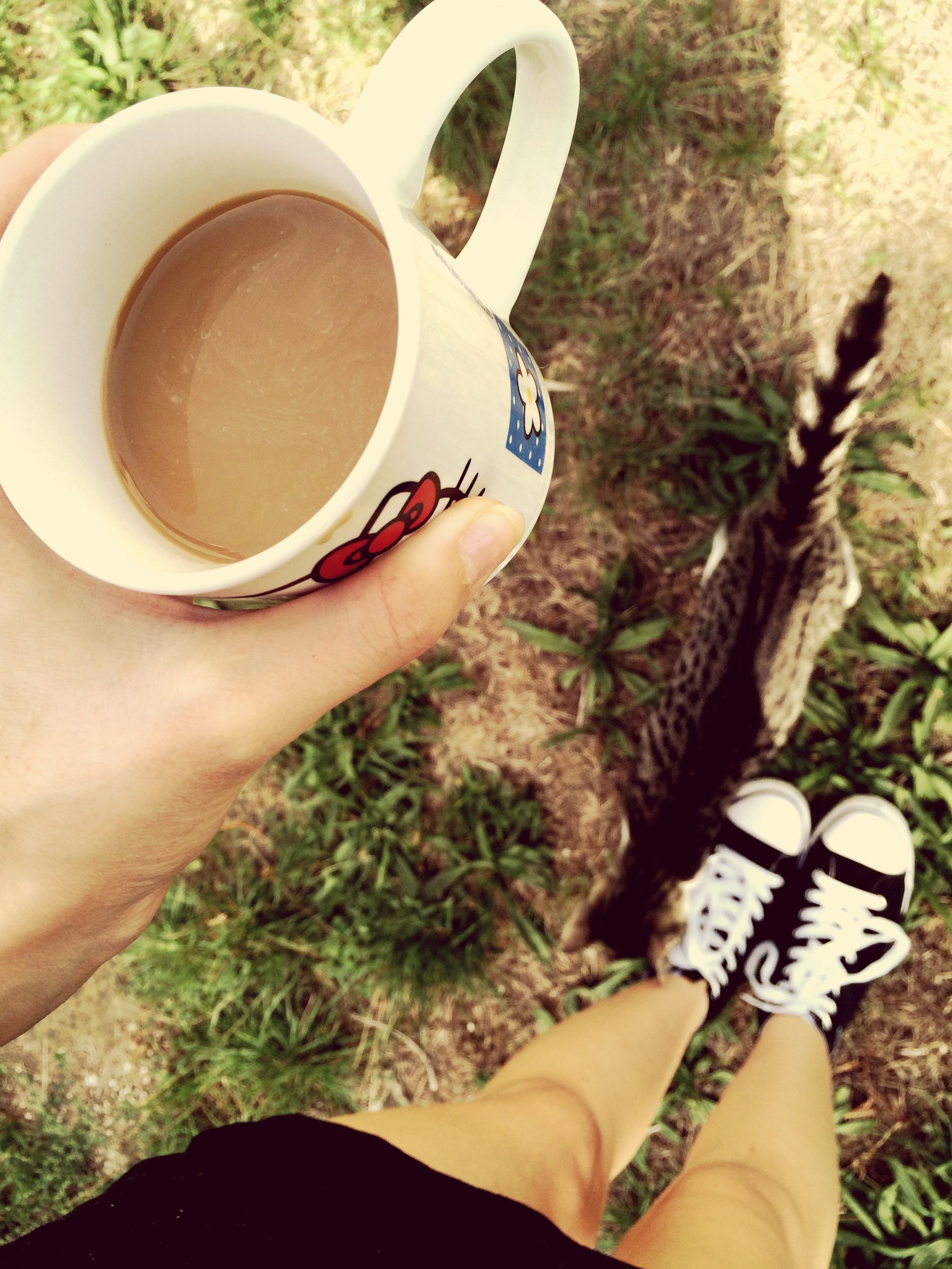 That's Me MyPhotography Iphonegraphy 📱💕 My Cat Coffee Time