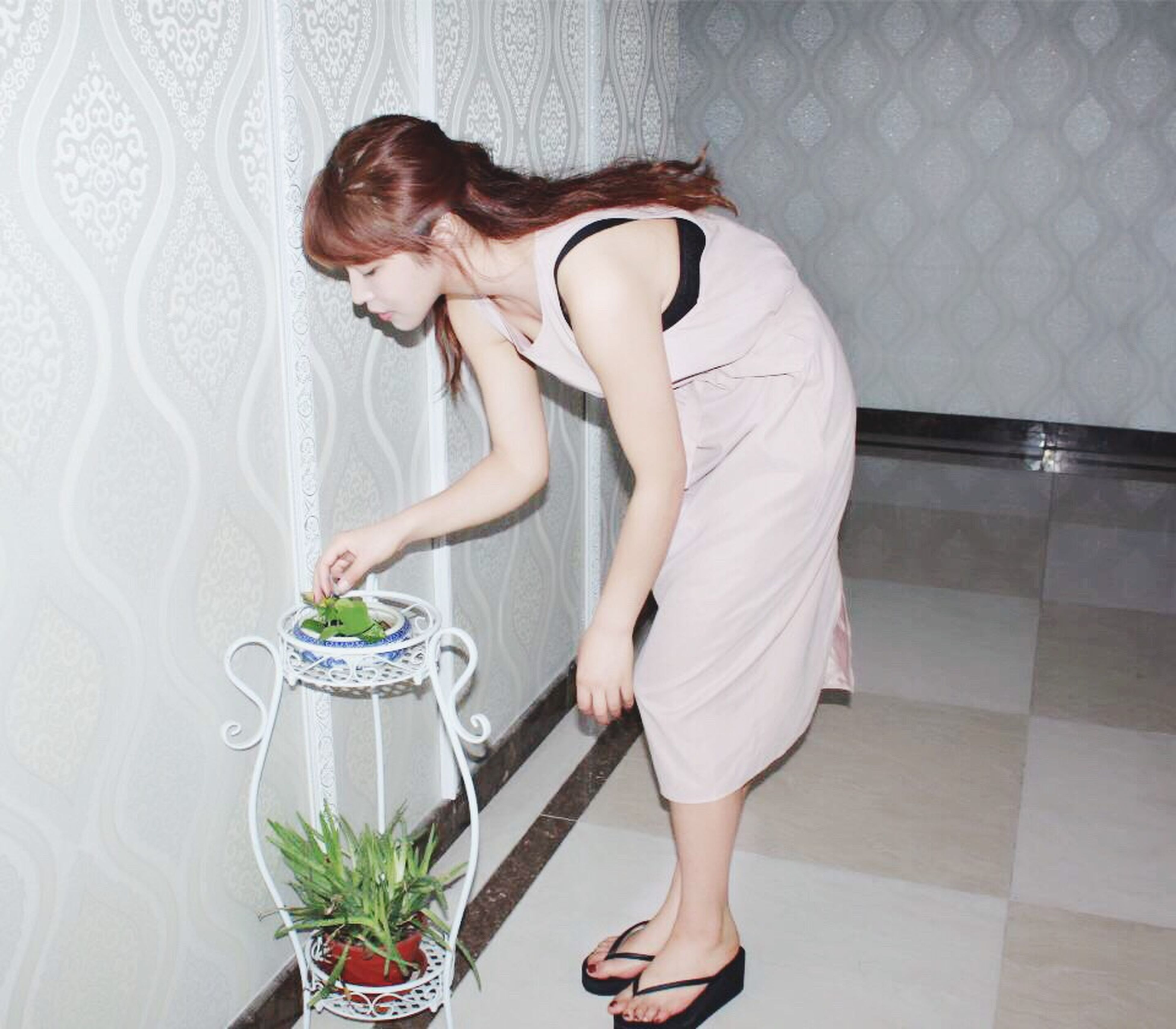 chores, domestic life, indoors, adults only, one woman only, only women, one person, home interior, dusting, mother, people, adult, working, young women, young adult, one young woman only, day