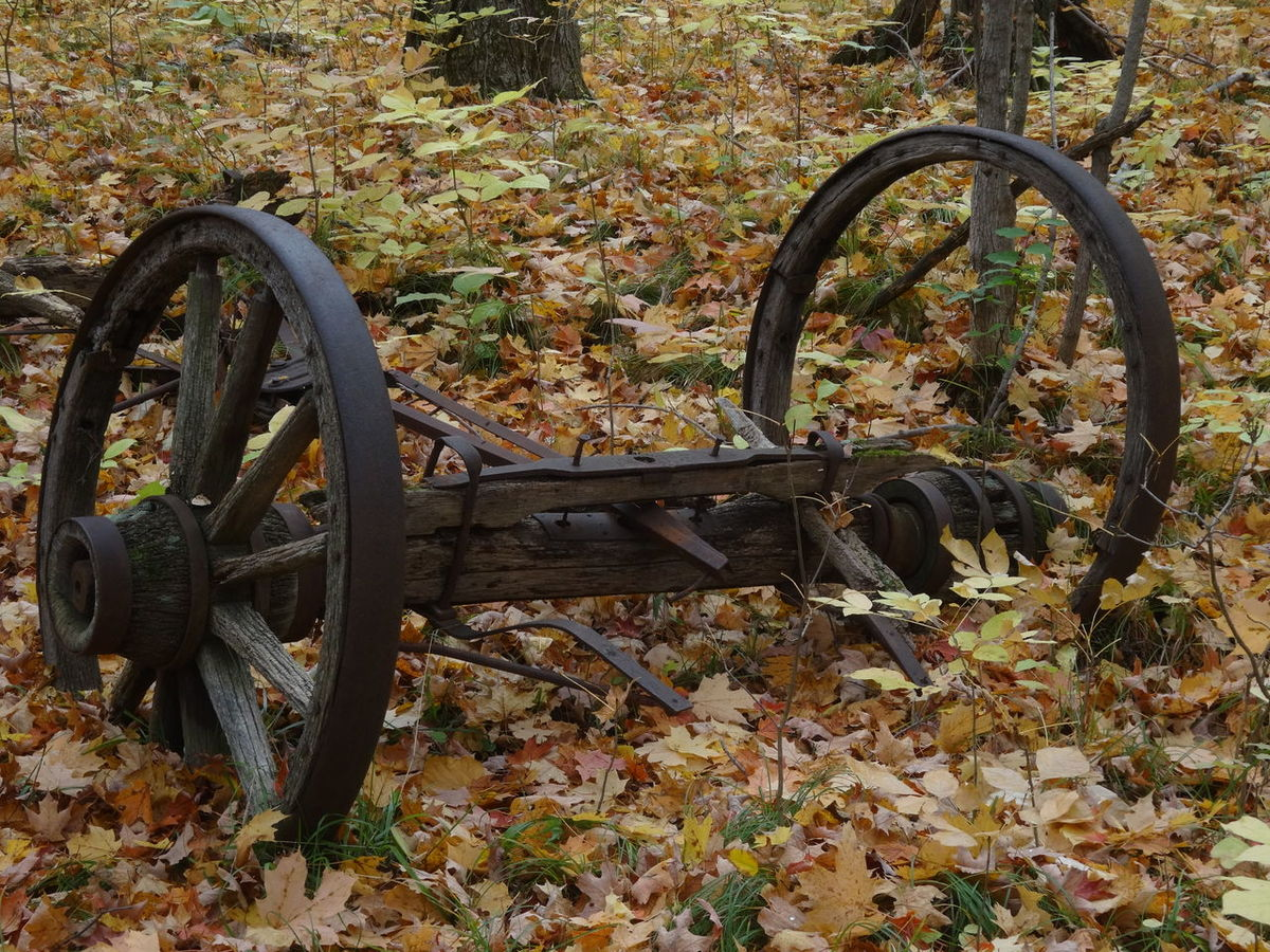 Wheel Day Abandoned Outdoors No People Rusty Metal Surface Showcase April Focus On Foreground Pure Michigan Nature Autumn Nature Lover EyeEm Best Shots Autumn Colors Wagonwheels