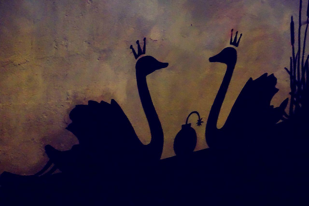 Pastel Pastel Colors Swans Graffiti Graffiti Art Painted Wall Grafitti Graffitiart Grafitti Wall Swan Crown Bomb Pictures On The Wall Picture On The Wall Lovely Picture Black Swan Black Swans