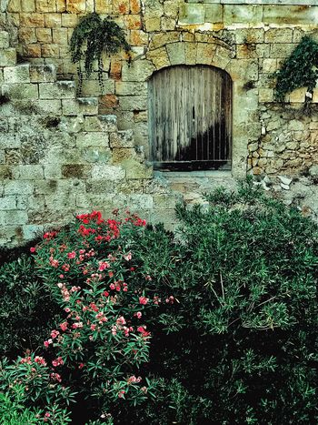 Garden Old World Architecture Wooden Shutters Architecture Building Exterior Built Structure Day Flower Gardens Growth Nature No People Old World Charm Outdoors Plant Rustic Setting Stone Wall Background
