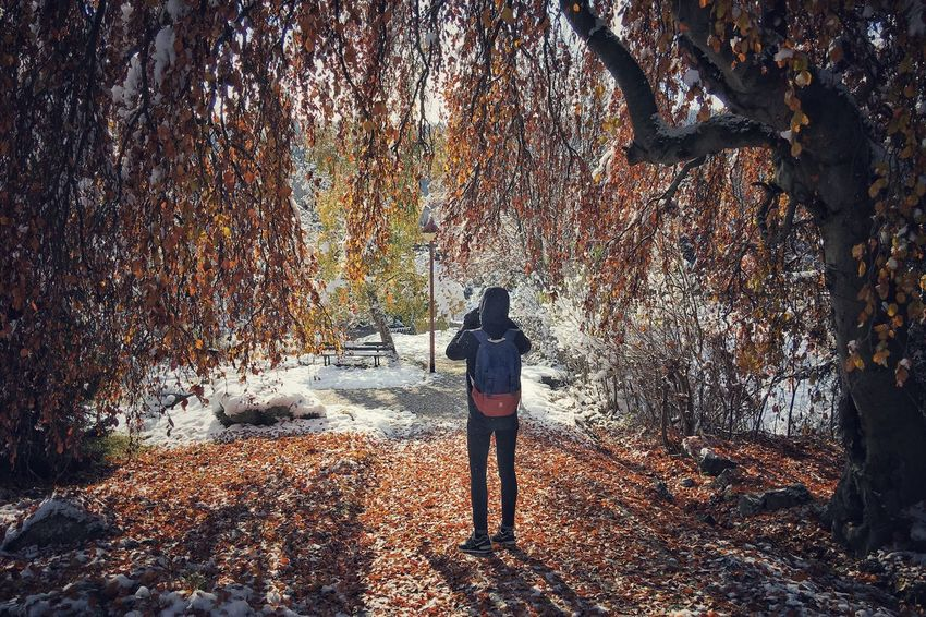 Full Length Rear View Tree One Person Nature Forest Real People Standing Autumn Leisure Activity Women Lifestyles Beauty In Nature Day Outdoors Men Adult