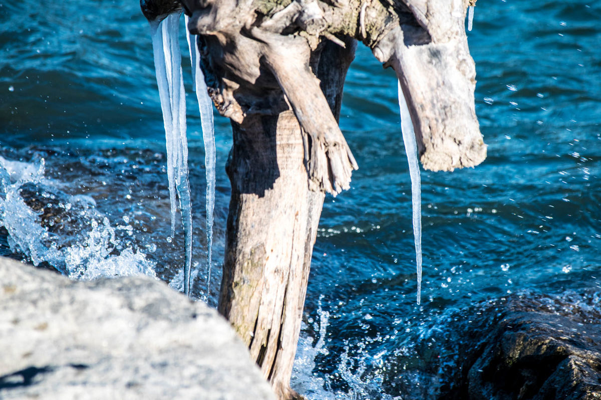 Lake Lake Ontario Log Tree Trunk Ice Icicles Waves Splash The Purist (no Edit, No Filter) Nature Naturelovers Nature Photography Nature Lovers Nikon D3300 Nikonphotographer Nikonphotography Amateurphotography Amateurphotographer  Rocks Teamnikon