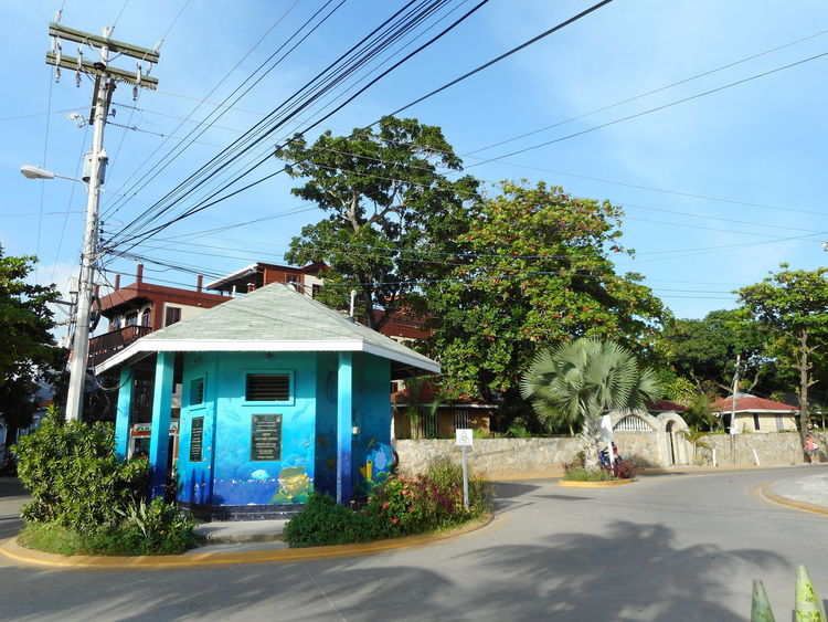 Honduras Roatan Architecture Bay Islands Building Exterior Built Structure Cable Day Electricity  Electricity Pylon House No People Outdoors Power Line  Power Supply Road Sky Street Transportation Tree