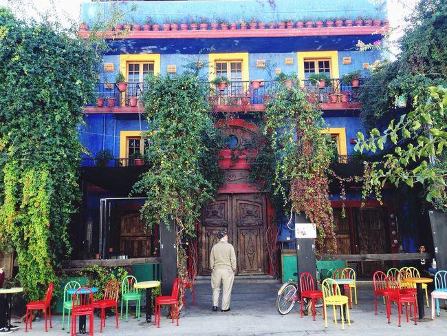 Taking Photos Enjoying Life Hi! Man Walking Around Walking Around The City  Walking Man Blue House Blue Monterrey Mexico Mexico De Mis Amores Mexicolors Colorful Colors Colorlove EyeEm Gallery