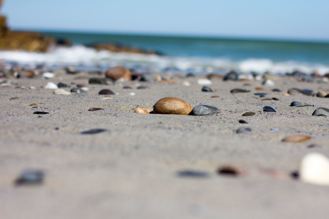 Beach Sea Sand Water Pebble Close-up Day Sea Life Seashell Nature No People Outdoors Horizon Over Water Vacations Beauty In Nature Wave Sky