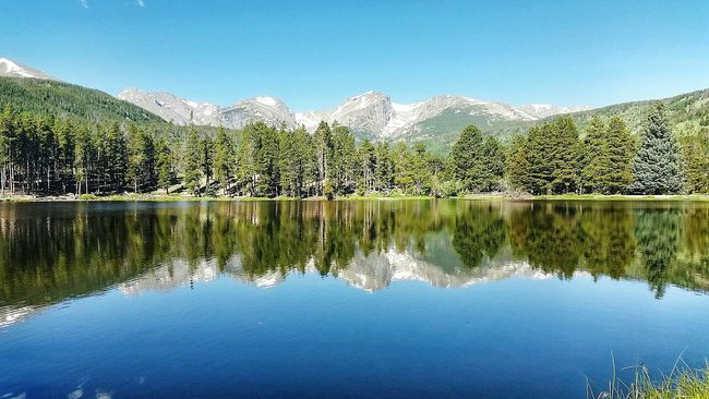 Colorado COLife Reflection Flattopmountain Mountains View Lake Trees Summer Rockymountainnationalpark
