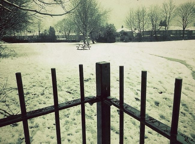 Bleak Cold Winter ❄⛄ Snow ❄ Out And About