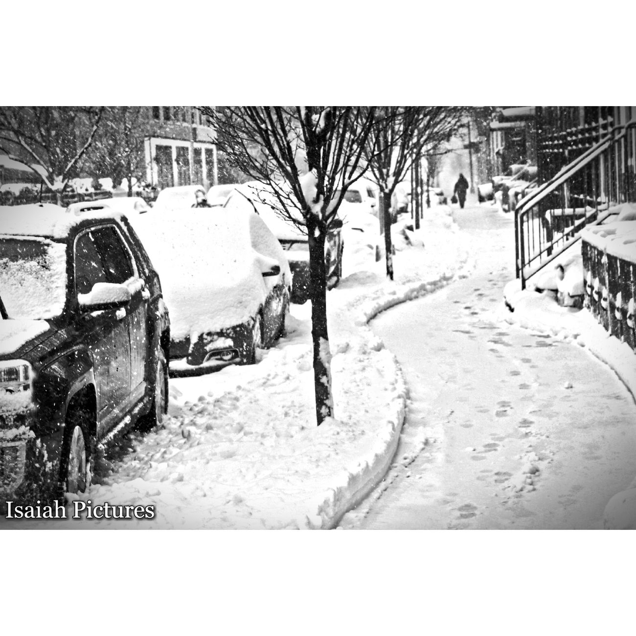Snow Cold Temperature Winter NYCImpressions NYC LIFE ♥ Snow❄⛄ Snowstorm Snow Covered NYC Photography Brooklyn Ny