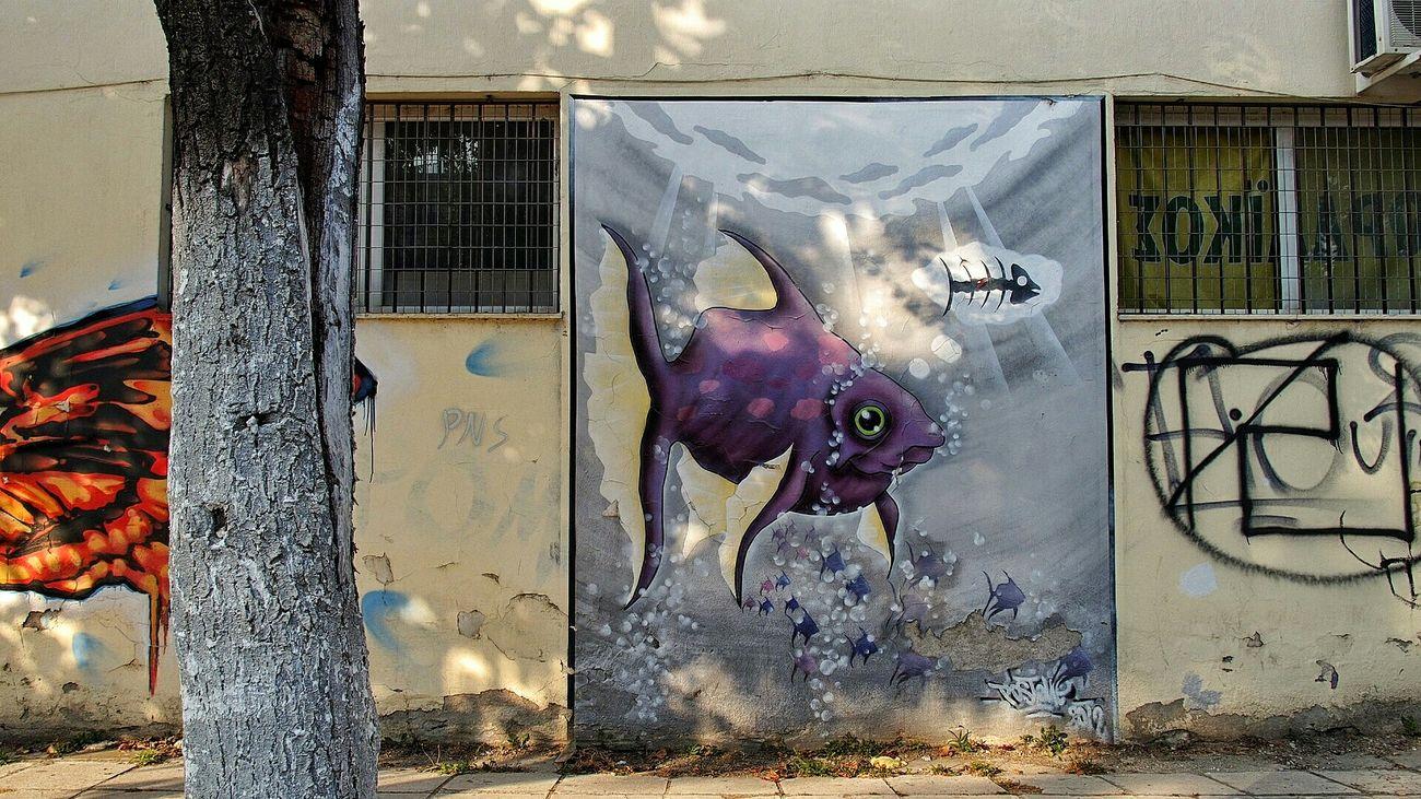 https://youtu.be/JYpC11Y72oM Go Fish Graffiti Art Graffiti Colorful Frontal Shot Color Photography Wall in Πτολεμαΐδα Ελλάδα VisitGreece