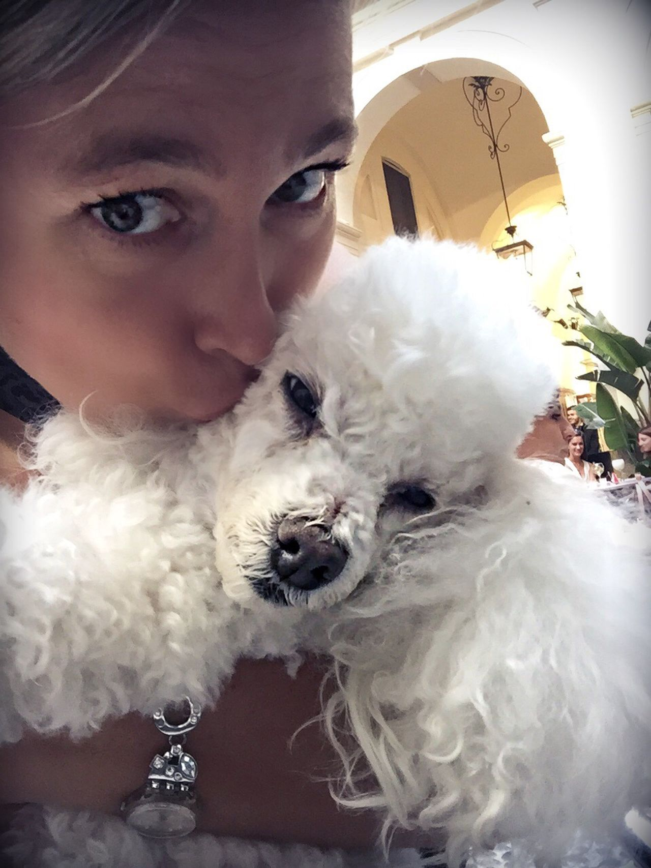 Love Poodle Poodle Love Poodletoy Poodlemania Portrait Women Kiss Hug Lifestyles Pet Poodlemix Dog One Animal Togetherness Pet Owner White Color Friendship Loyalty Leisure Activity Canine