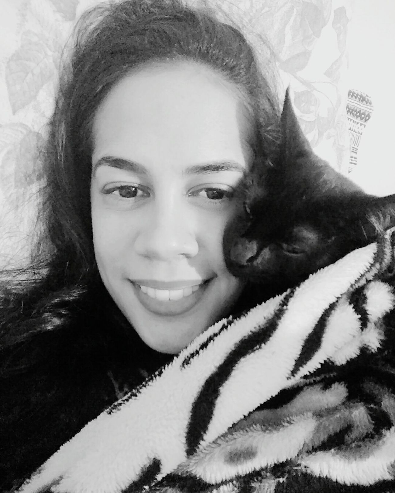 Cats 🐱 Black Cat Black My Love Baby ❤ Neném Smail Brasil