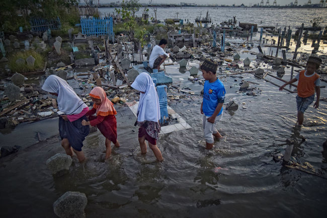 """Residents pilgrimage at the tomb which is submerged in Tambak Lorok Semarang, Thursday, May 5, 2016, Condition burial place Tambaklorok citizens who were right on the seafront, the current tomb was threatened residents abrasion and someday be wiped if not handled seriously Even to bury the bodies, citizens must use water pumps. Otherwise, the bodies would be buried with water. More than half of the tomb has been eroded by water. """"Even so many people who still wears his tomb. The wear is not only local residents but also some locals Kemijen, Sawah Besar and so on, besides abrasion, subscriptions also rob the tomb. So not only homes were flooded, but also the tomb of the citizens. In fact, to bury the bodies, citizens must fight the sea. Tambaklorok handling can not be partial alias only one section, such as the tomb. Tambaklorok tomb problem was only one of the problems that exist in sana.salah rob one way is to complete the coastal belt program. Tambaklorok tomb, also should be protected by coastal belt Casual Clothing Central Java Children Day Enjoyment Flood INDONESIA Leisure Activity Lifestyles Nature Outdoors Semarang Water"""