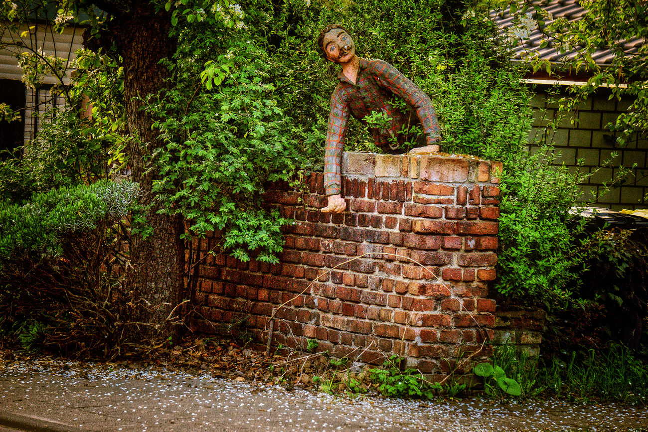 Art Workshop Atelier Building Exterior Day Figure One Person Outdoors Skulptur Standing Tree