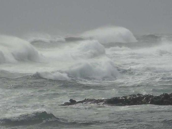 Golfo De Penas Isla Byron