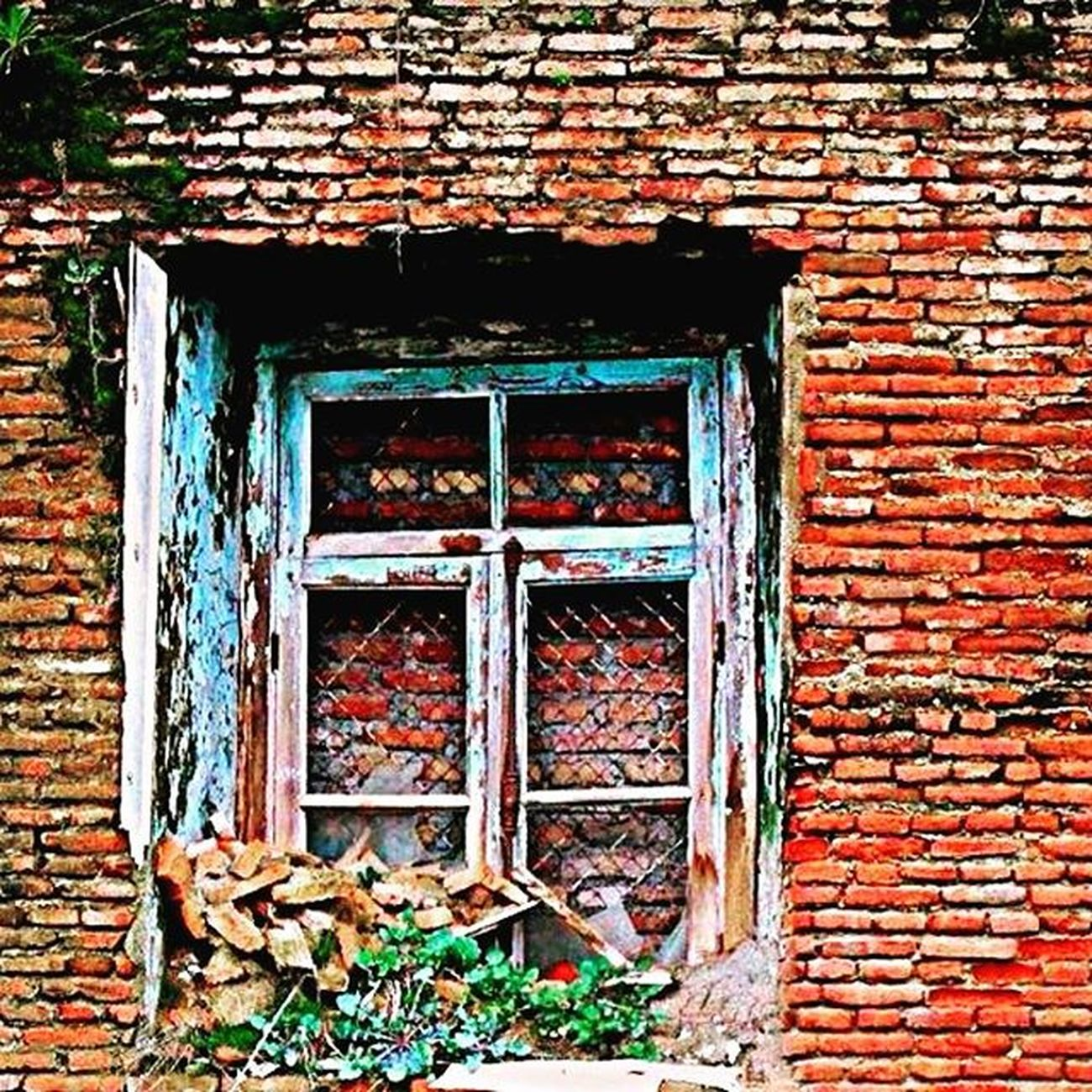Window Pencere