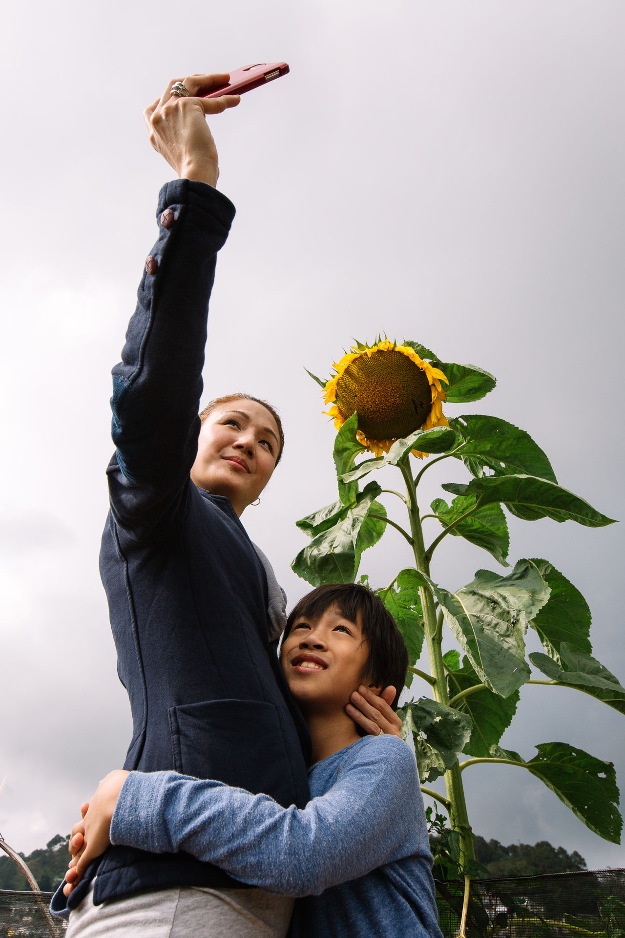 Beautiful stock photos of sunflower, 40-44 Years, 8-9 Years, Arms Around, Asian And Indian Ethnicities