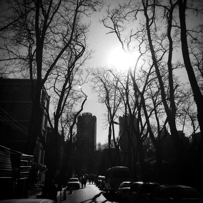 Perfect Day Hello World IPhoneography Grey Sky Winter Beijing 二环路 Blackandwhite Blakck And White
