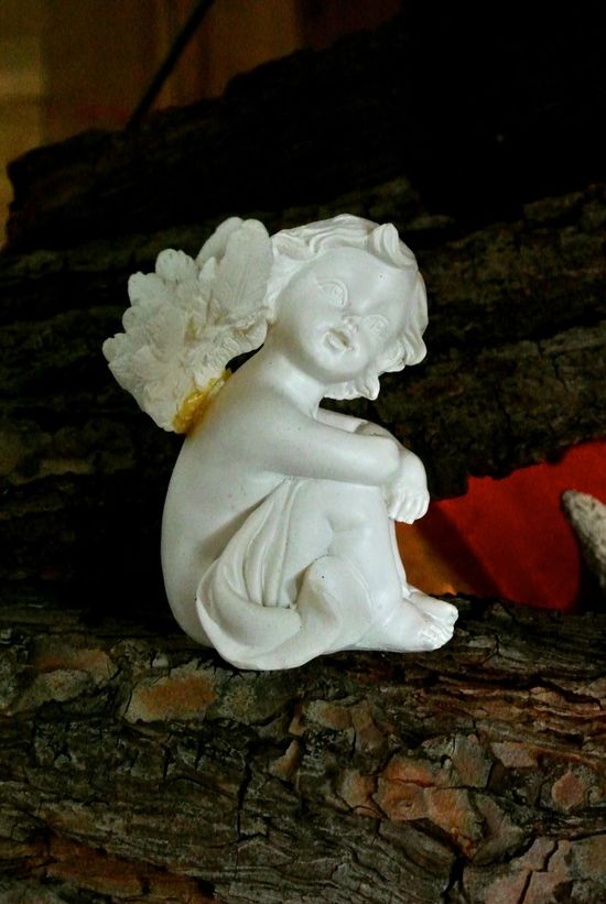 Angel sitting on a branch Ange Angel Branch Christmas Close-up Decoration
